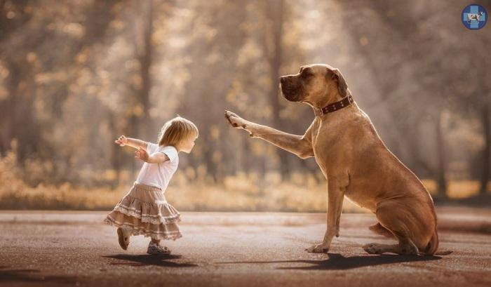 little-kids-big-dogs-3.jpg