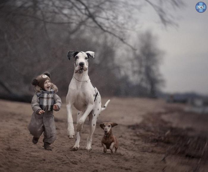 little-kids-big-dogs-6.jpg