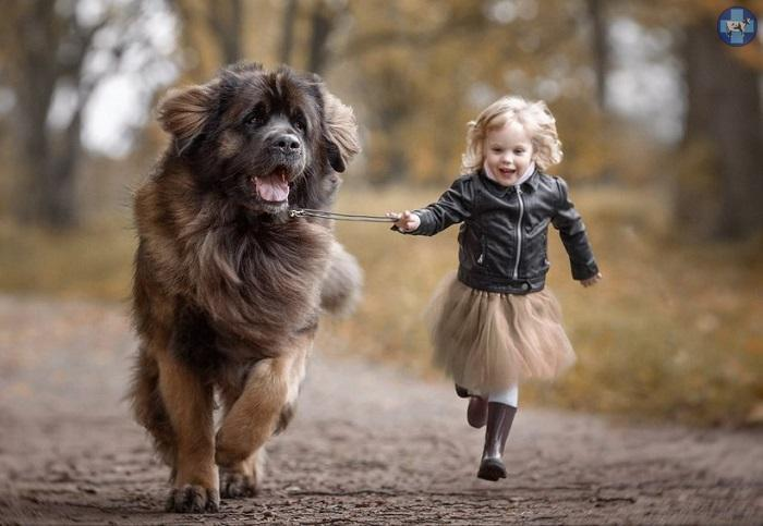 little-kids-big-dogs-17.jpg