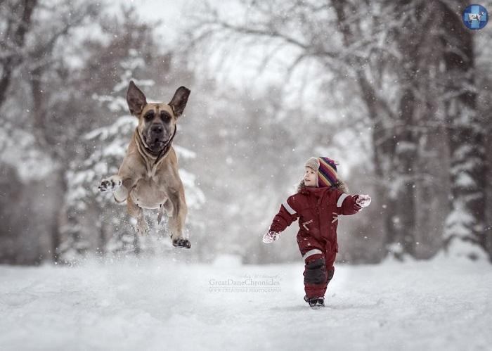 little-kids-big-dogs-25.jpg